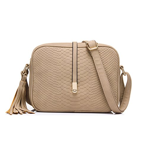 (ANANXILA Small Shoulder Bag For Women Messenger Bags Retro Handbag Purse With Tassels Crossbody Bag Beige )