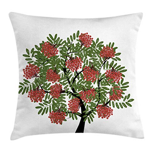 - Ambesonne Rowan Throw Pillow Cushion Cover, Rowan Tree Full of Fruits Fresh Organic Ecology Themed Artwork, Decorative Square Accent Pillow Case, 16 X 16 Inches, Olive Green Dark Coral Black