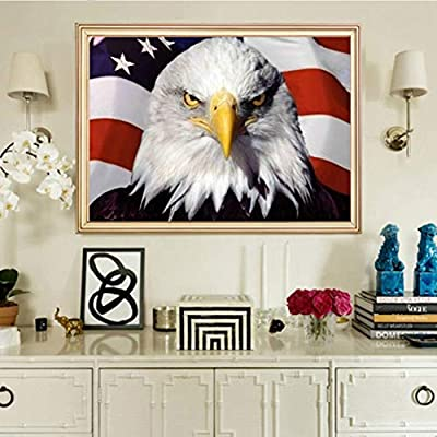 5D Diamond Painting by Number Kits Full Drill for Adults Kids,Craft Rhinestone with Diamonds Set Arts Decor Gift Bald Eagle American Flag 15.7x11.8in 1 Pack by Lighting S Direct: Arts, Crafts & Sewing