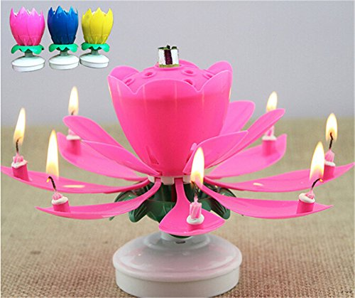 France Wispun Rotating Music Amazing Birthday Candle Flower Special For Pink