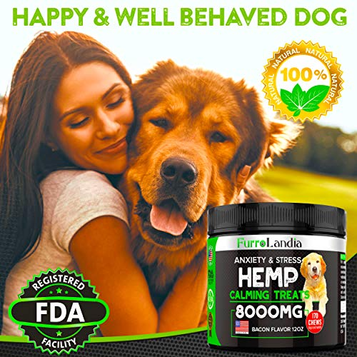 Hemp calming treats for dogs