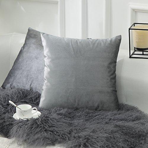HOME BRILLIANT 2 Pack Velvet Cushion Covers Throw Pillow Cov