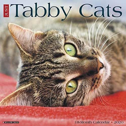 (Tabby Cats 2020 Wall Calendar)