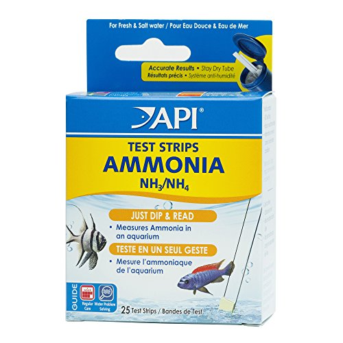 Ammonia test strip
