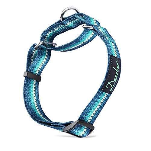 Martingale Collars for Dogs Durable D-ring Heavy Duty No Pull No Escape Dog Collar for Large Breed By Dazzber (L, Turquoise Green) (Dog Turquoise Collar)
