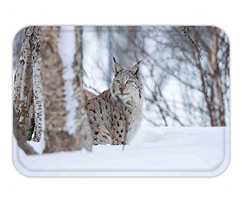 Minicoso Doormat Animal European Lynx Snowy Cold Forest Norway Nordic Country Wildlife Apex Predator Light Brown - Apex Cincinnati
