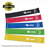Limm Resistance Bands Exercise Loops - Set of 5, 12-inch Workout Bands for Home Fitness, Stretching, Physical Therapy and More - Includes Bonus eBook, Instruction Manual, Online Videos & Carry Bag
