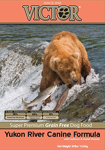 Victor Yukon River Salmon & Sweet Potato Grain-Free Dry Dog Food, 30-Pound