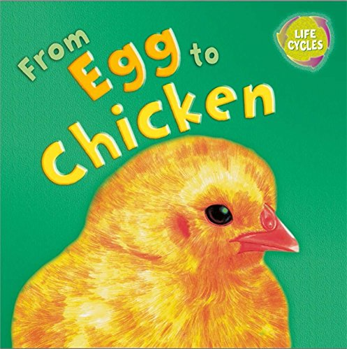 Download From Egg to Chicken (Lifecycles) PDF