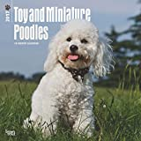 Toy and Miniature Poodles Wall Calendar 2017 {jg} Best Holiday Gift Ideas - Great for mom, dad, sister, brother, grandparents, , grandchildren, grandma, gay, lgbtq.