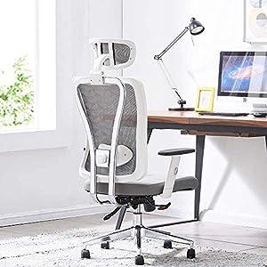 Cedric Chaise de Bureau, Chaise d'ordinateur en Maille Respirante avec Support Lombaire réglable Ergonomique, Chaise de…