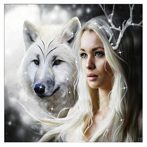 - Wolf and Princess Diamond Embroidery Paintings Pictures DIY Paint with Diamonds Arts Craft for Home Wall Decor - Half Drill (13.8 inch x 9.8 inch) ()