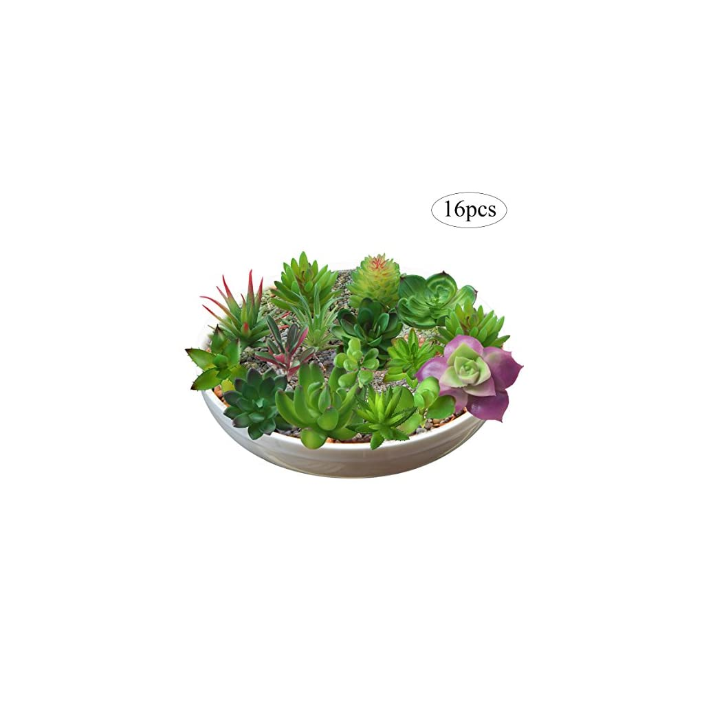 BTSD-home-16-Pcs-Mixed-Artificial-Succulent-Flowers-Plants-Unpotted-Decor-Stems-Fake-Succulents-Plants-Bulk-Assorted-Picks-for-Home-Decor-Indoor-Wall-Garden-DIY-Decorations