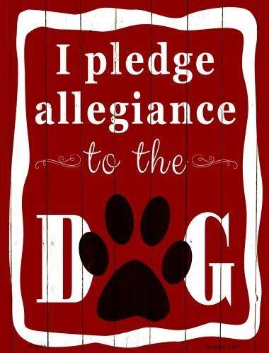 (Bargain World I Pledge Allegiance to The Dog Metal Novelty Parking Sign (Sticky Notes))