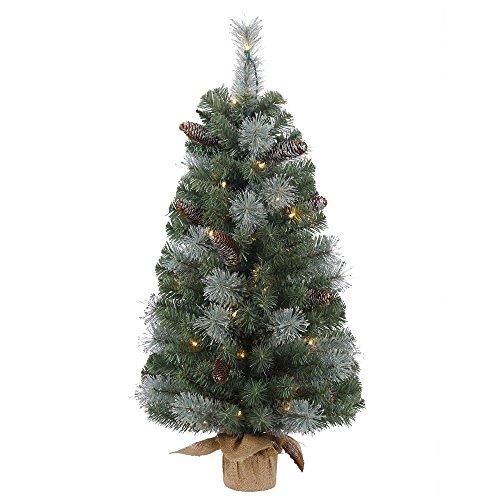 Vickerman B154631 Mix Pine Tree with Burlap Base, 50 Lights & 140 Tips, 36