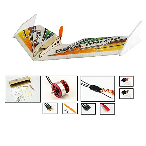 DW Hobby 3CH EPP Electric Micro Flying Wing Rainbow w/600mm Wingspan Delta Wing Tail-Pusher Flying Aircraft w/ Motor/ESC/Servo/Transmitter/Receiver for Toy Plane (E0404)