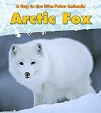 Arctic Fox (A Day in the Life: Polar Animals)