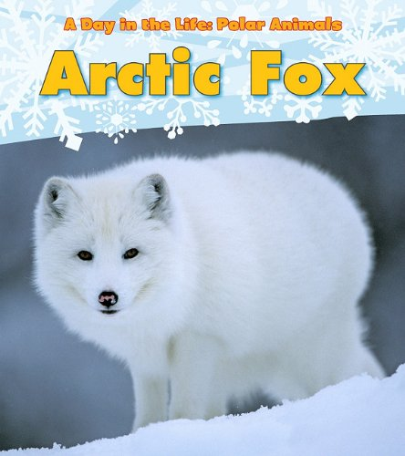 Arctic Fox (A Day in the Life: Polar Animals) by Heinemann