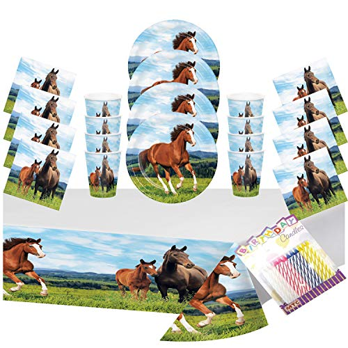 Horse and Pony Party Plates Napkins Cups and Table Cover (Serves-16) with Birthday Candles - Horse and Pony Party Supplies Pack Deluxe (Bundle for 16)]()