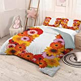 FANOEWI Bed Sheet Set - Decorative 3 Piece