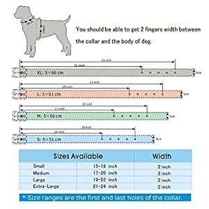 Rachel Pet Products 3 Rows Silver Rivets Studded Genuine Leather Dog Collars for Medium/Large Dogs, White, S