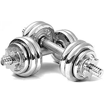 egymcom 33 Lbs Chorme Adjustable Dumbbell Set with Storage Case (Pair)