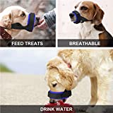 Gentle Dog Muzzle for Small, Medium, Large