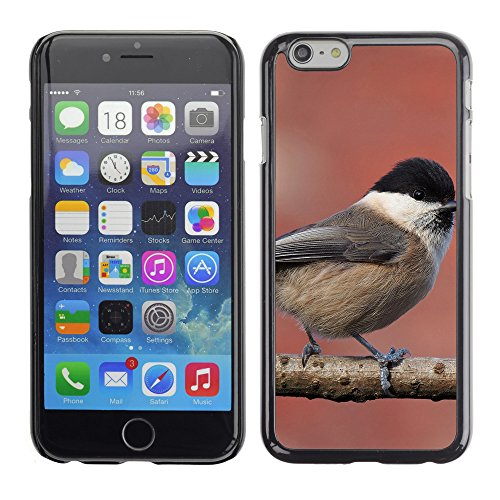"Premio Sottile Slim Cassa Custodia Case Cover Shell // F00016133 Oiseau chanteur // Apple iPhone 6 6S 6G 4.7"""