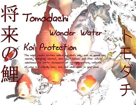 tomodachi Wonder Water koiprotection Agua arenosos 1 kg: Amazon.es ...