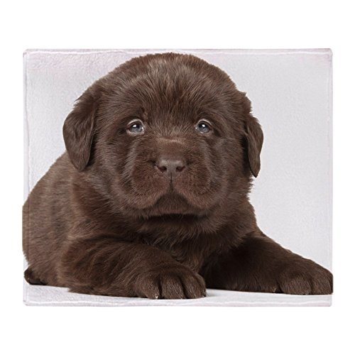 Puppies Fleece Blanket (CafePress - Chocolate Lab Puppy - Soft Fleece Throw Blanket, 50