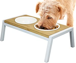 WANTRYAPET Elevated Dog Bowls Antirust Stainless Steel Raise Pet Feeder for Dog Cat