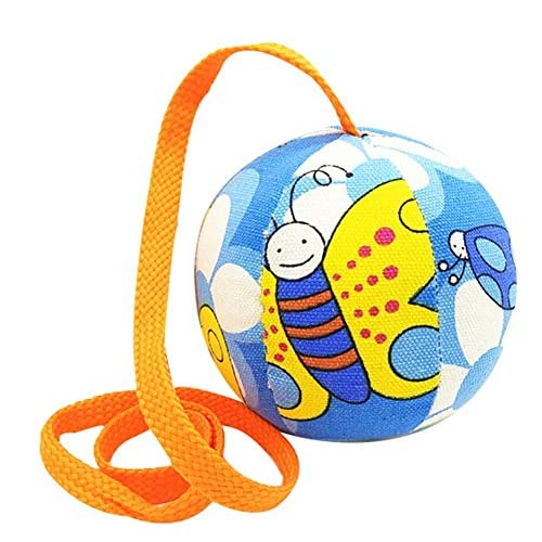 2 Pcs Balles de la Maternelle Pour Enfants Lancer des Balles Molles Balles Sacs de Sable Jouets