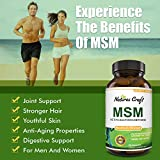 MSM Supplement For Humans – Natural Antioxidant