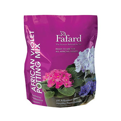 African Violet Flowering (Conrad Fafard 4000805 African Violet Mix, 8-Quart)