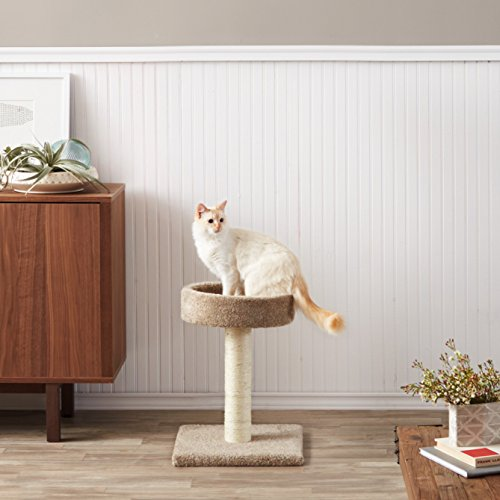 AmazonBasics-Cat-Tree-with-Scratching-Posts-Small