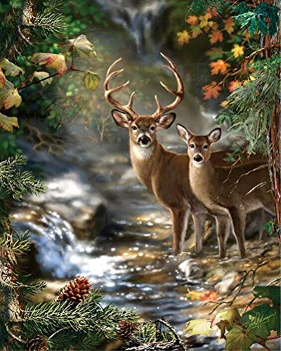 Full Drill 5D Diamond Painting Kit, Benbo 15.8x11.8In DIY Diamond Painting by Numbers Diamond Embroidery Dotz Kit Cross Stitch Rhinestone Embroidery Pictures Arts Craft for Home Decor (Deer ()