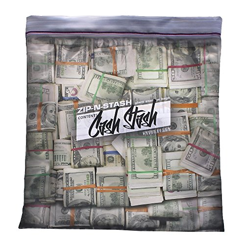 Steelplant Cash Stash - Cash in Ziplock Pillowcase,Money Green,17Wx19H inch case for a 18