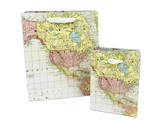 - World Map Set of Two Novelty Party Celebration Birthday Gift Bags