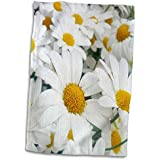 """3dRose Daisies All in a Row Towel, 15"""" x 22"""""""