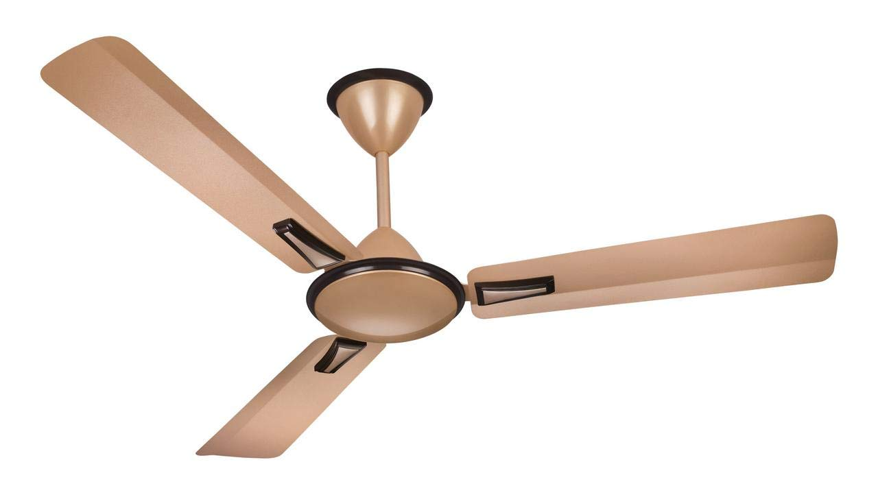 Wide Blade Ceiling Fans 2021
