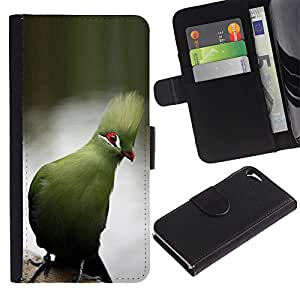 Paccase / Billetera de Cuero Caso del tirón Titular de la tarjeta Carcasa Funda para - blue parrot tropical lake water branch - Apple Iphone 5 / 5S