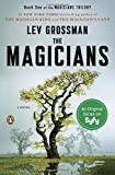 img - for The Magicians: A Novel (Magicians Trilogy) book / textbook / text book