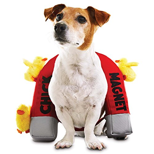 Bootique Chick Magnet Dog Costume, X-Small/Small (Spirit Halloween Pet Costumes)