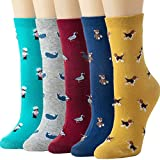 Womens Socks Cactus Crew Socks Gifts Cotton Long Funny Socks for Women Novelty Funky Cute Cartoon Socks 5 Pairs WCS1-5 Pairs Dolphin