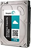 PC Hardware : Seagate Enterprise Capacity 3.5 HDD 6TB 7200RPM 12Gb/s SAS 128 MB Cache Internal Bare Drive ST6000NM0034