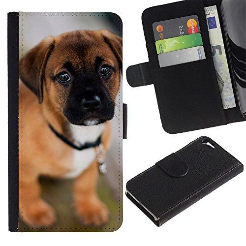 Be Good Phone Accessory // Flip Étui de Protection Cuir Portefeuille Housse Fente Carte Coque pour Apple Iphone 5 / 5S // Puppy Mastiff Bull Cute Dog Pet