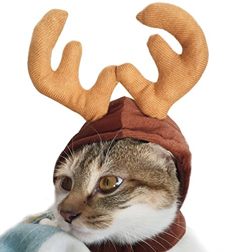 Wildforlife Halloween Pet Cute Reindeer Costume Hat for Cat and Small Dog]()