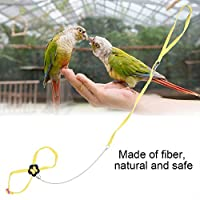 Cuerda de fibra, suave y cómoda Cinturón ajustable para pájaros ...