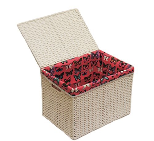 Arpan Medium Paper Rope Basket Storage Chest Trunk Hamper/Kids Toy Storage with Butterfly Cloth Lining, White by ARPAN (Uk Wicker Storage Chest)