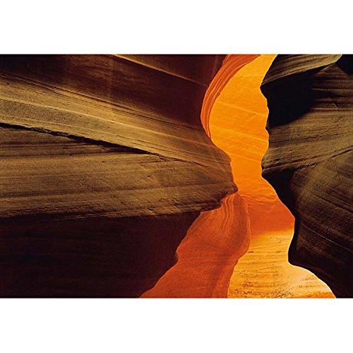- Komar Side Canyon Wall Mural
